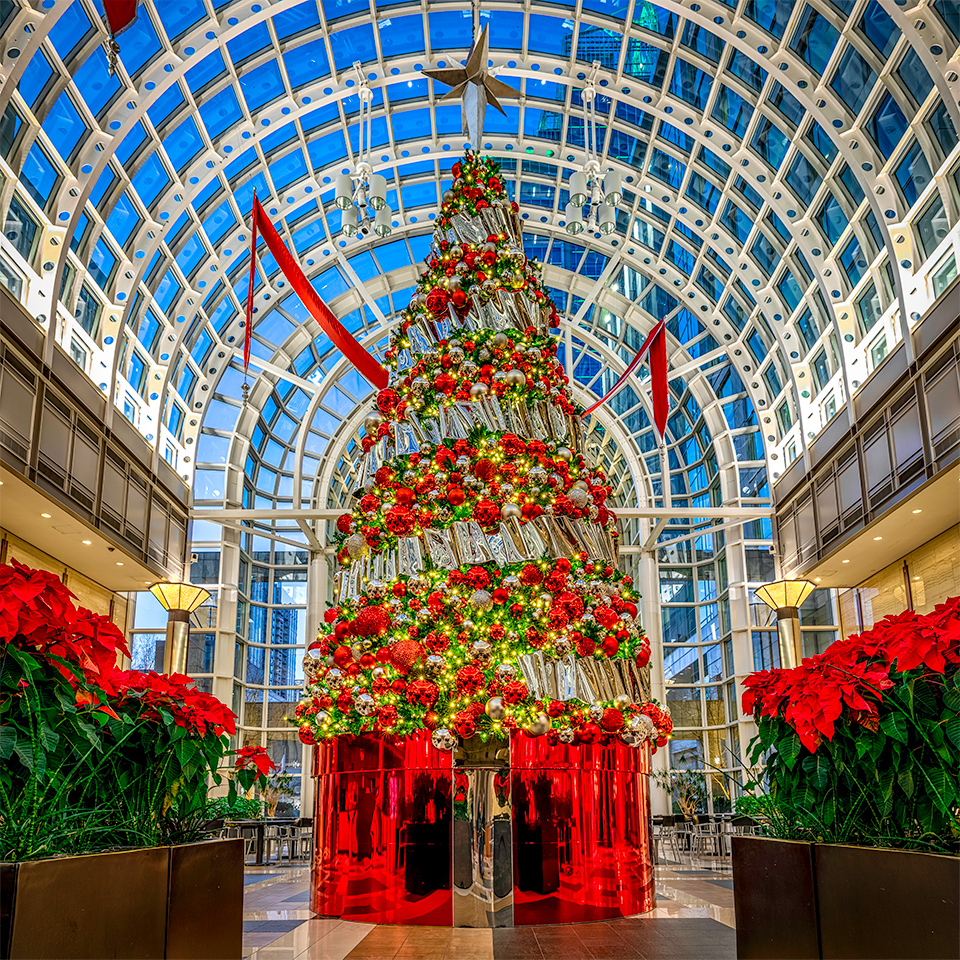 Classy Christmas Decorations in Class A Corporate Headquarters Lobby Charlotte NC