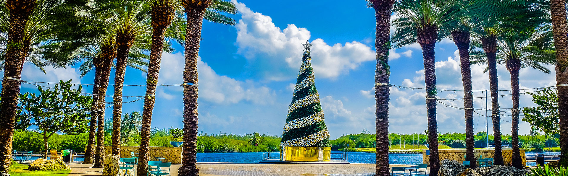 Giant Outdoor Christmas Tree at Camana Bay Entertainment Center